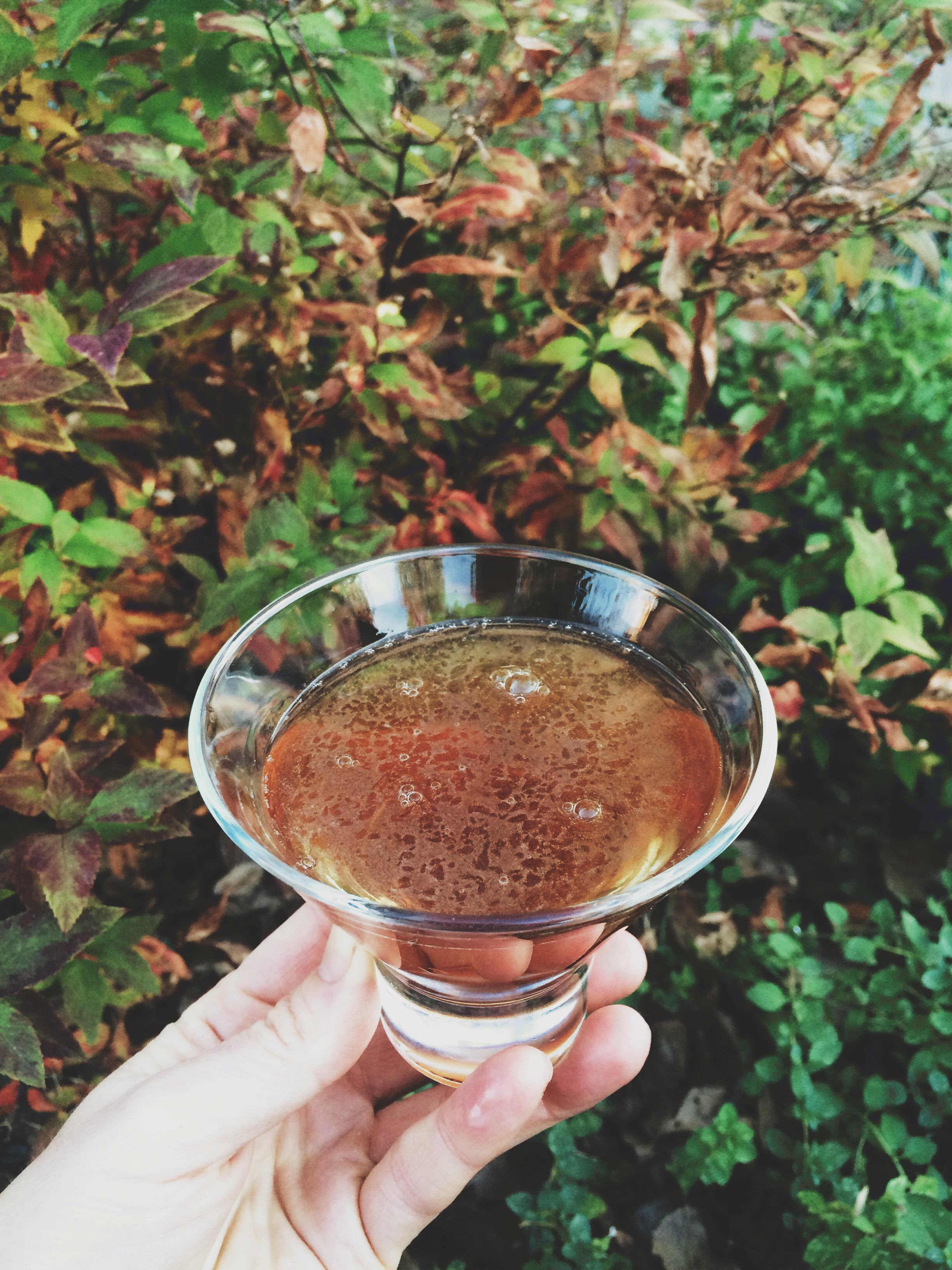 hand holding martinez cocktail in the garden